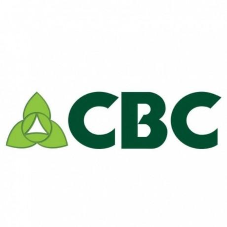 Logo Credit Bureau Cambodia